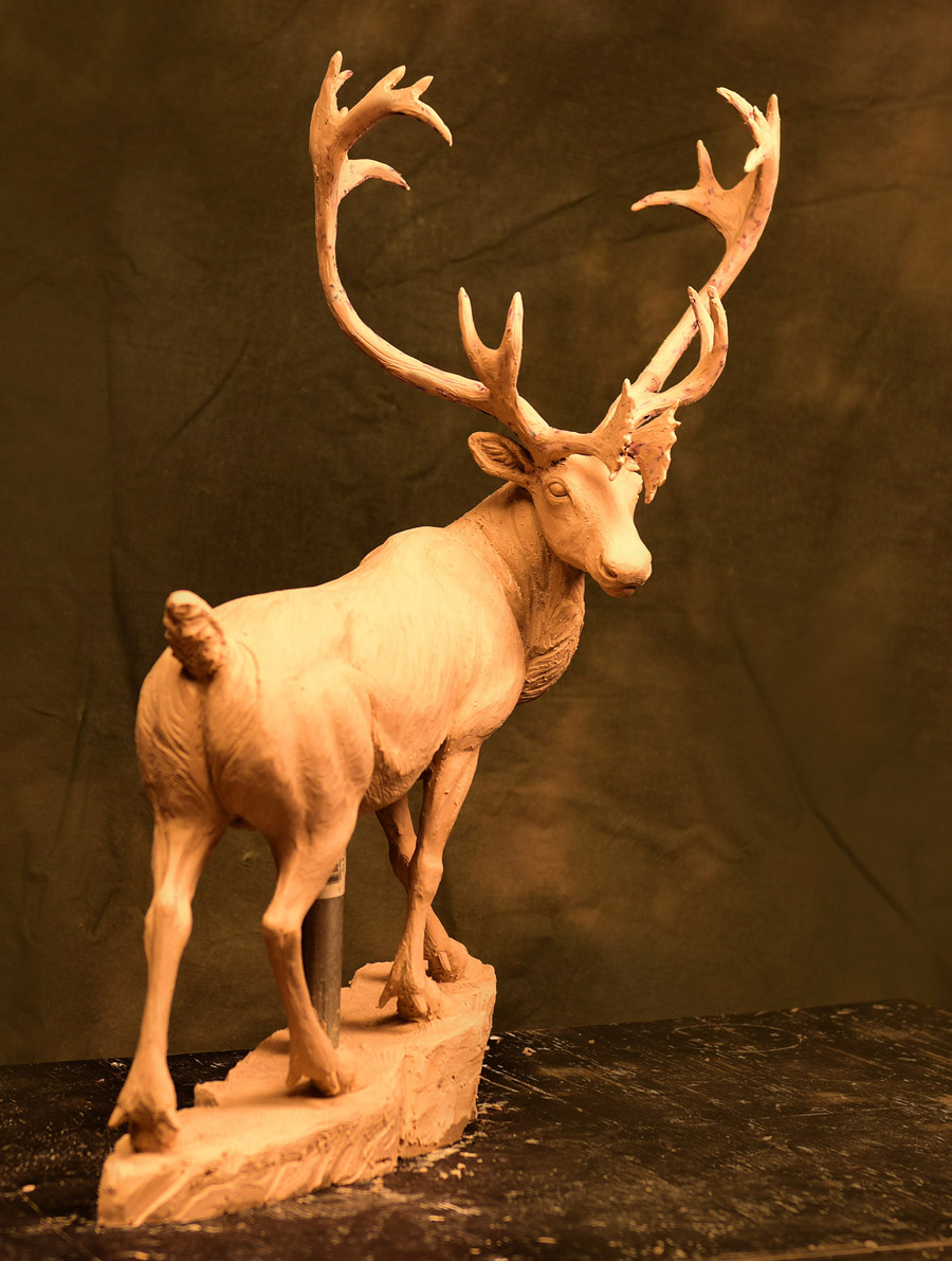 Caribou Bull has just been approved!