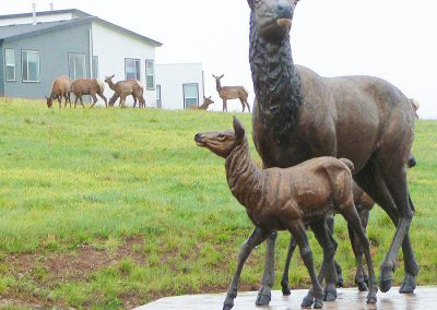Golden Elk monument with elk herd