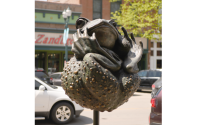 Twisted Toad installation in Sioux Falls